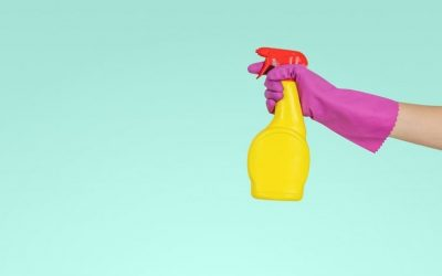 Alternatives to Chemical Laden Cleaners