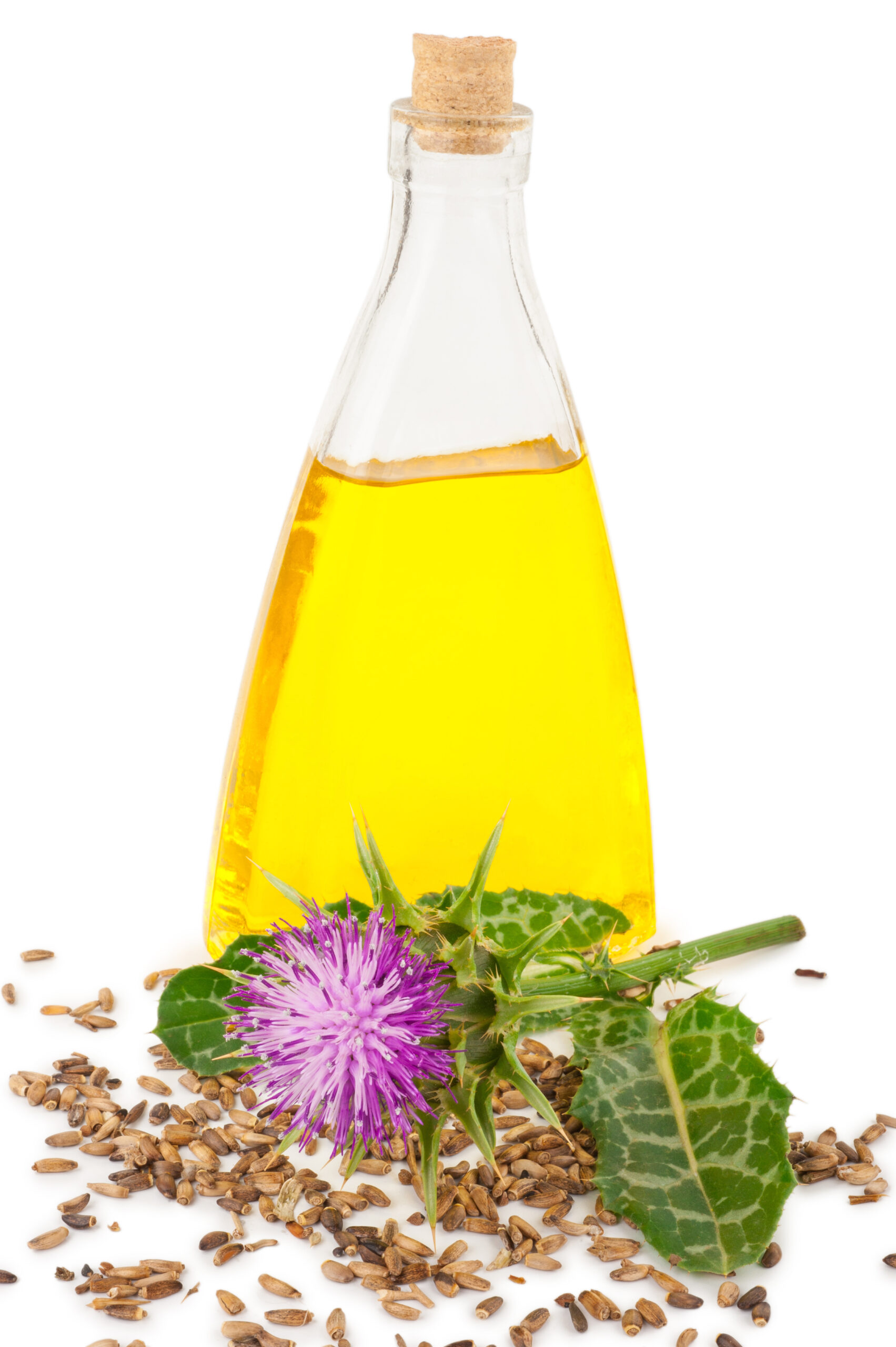 Milk Thistle: What You Need To Know To Use It Safely